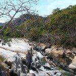 Canope Puerto Vallarta