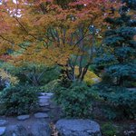 The Japanese Garden is delightful
