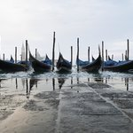 Venezia Immagini