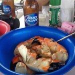 Large Stone Crabs. Yum