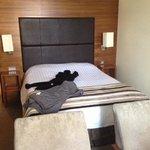 deluex double room