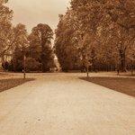 Il grande stradone che porta alla Reggia Ducale all'interno del parco