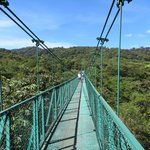 Awesome Hanging Bridges