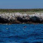 "A long swim to see the ""hidden beach."""