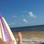 Ocean front hammock