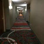 Photo de Holiday Inn Express Hotel & Suites Waterford