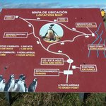 The hiking trails at Otway Sound Penguin Reserve near Punta Arenas, Chile