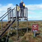 1 of several wildlife viewing towers at Otway Sound Penguin Reserve near Punta Arenas, Chile
