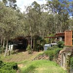 The Treehouse Pool Villas