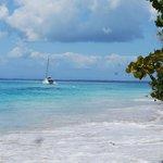 Resort Boat ride to Zapatillas island