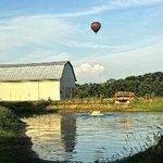 Area Hot air Balloons