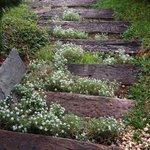 Escada charmosa!