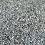 Seachell beach