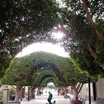 Archways in Plaza