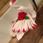 Bathroom swan