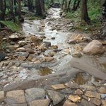 The creeks flowing after rain