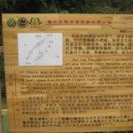 3 Bridge - sign 3 - Wulong China