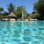 la piscine de Luna house
