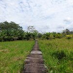 The way to the cabanas