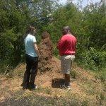 Wenhau Safaris Tours & Transfers - Day Tours
