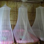 Beds with elegant mosquito nets