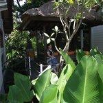 Gazebo Publik DI Area Villa