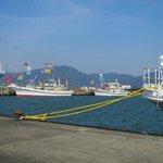焼津港(小川地区)