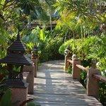 Gartenbereich auf dem Weg zum Pool / Restaurant
