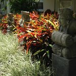 Colorful foliage everywhere with statuary