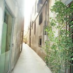 Picasso tour - narrowest street in Barcelona