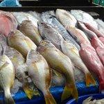 Etal de poissons prés de la plage
