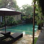 The Common Pool