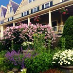 Lilacs at the Five Gables Inn