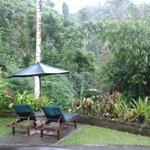 Our villa garden and view