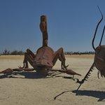 Huge scorpion