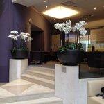 Orquideas en el lobby