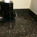 Another roach capture thing right next to coffee maker
