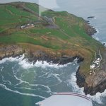 Fly over old head of kin sale