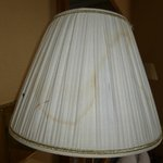 Stained Lampshades
