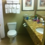 CLEAN BRIGHT BATHROOM, COULD BE A LITTLE LARGER