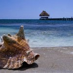 Shot of palapa form the beach