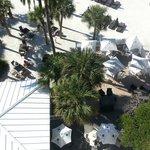 great beach front restaurant