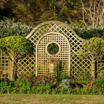 The old English garden