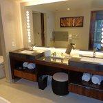 Great bathroom design - large double sinks