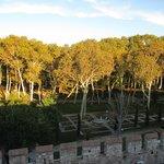 View over Park Gulhane (garden of the Topkapi Palace)