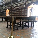 Panorámica de la biblioteca
