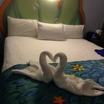 A great towel creation from our Disney Mousekeeper Joseph!