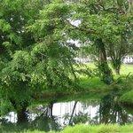 Foto de Wailoa River State Recreation Area