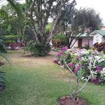 Really lovely gardens at front of hotel
