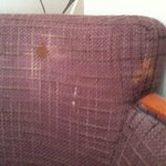 Stains on seat
